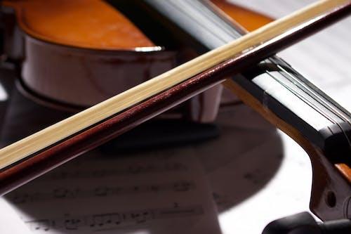 Foto stok gratis biola, busur, catatan musik, kayu