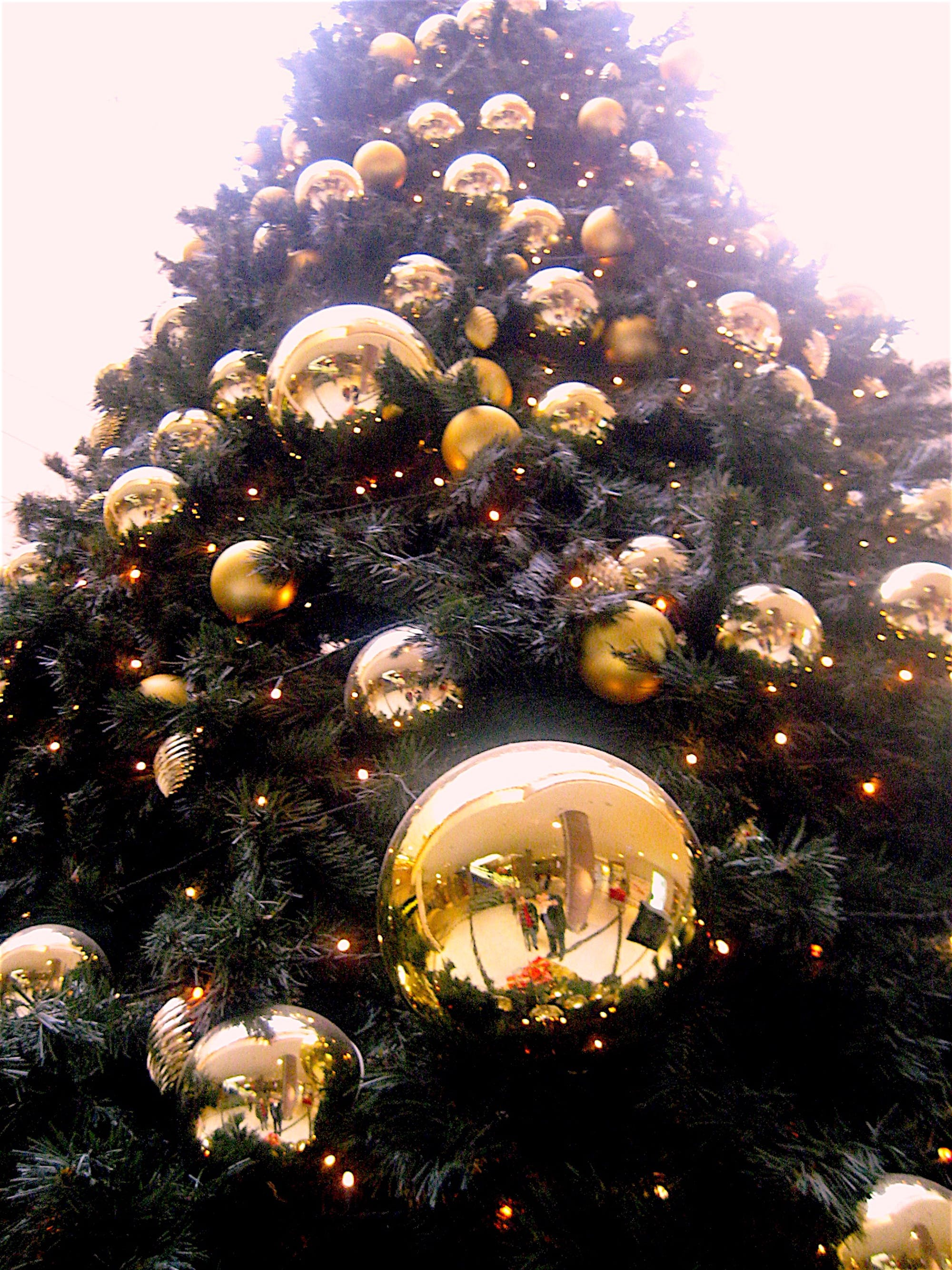 Low Angle Shot of Christmas Tree With Gold-colored Bauble