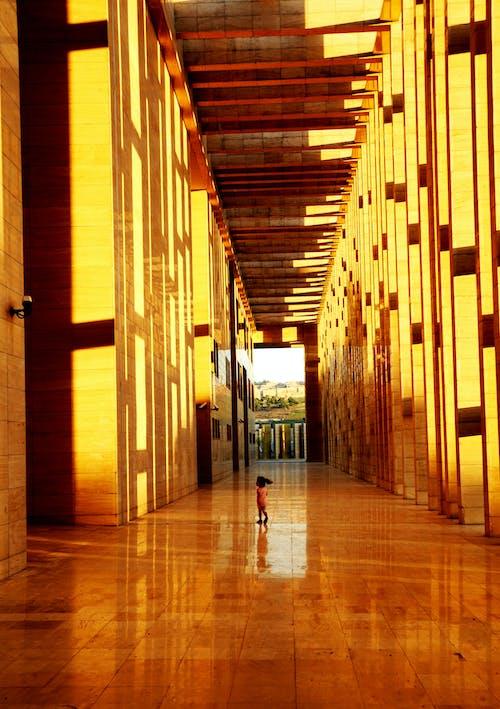 Immagine gratuita di colonne, corridoio, design architettonico
