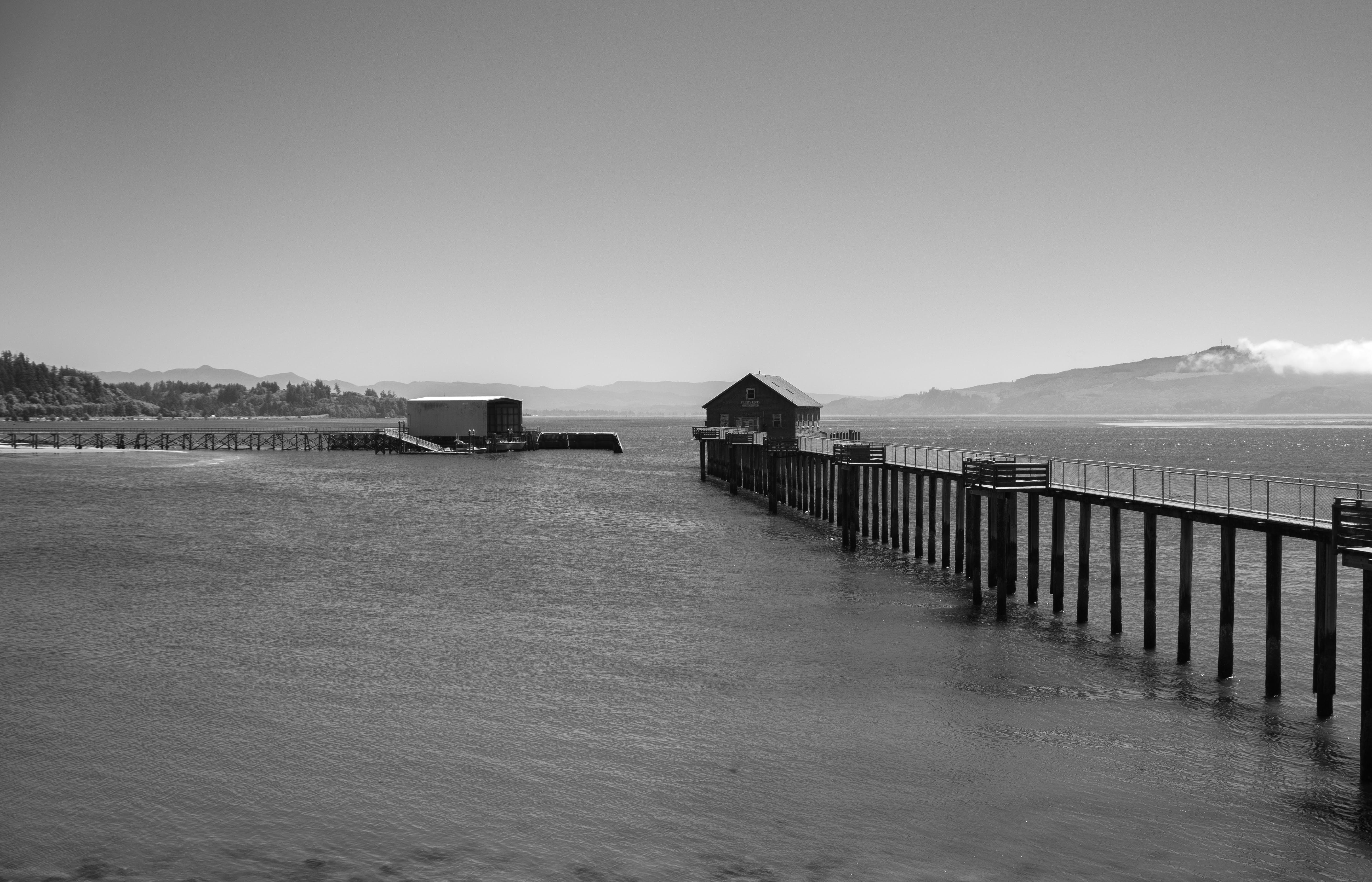 Free stock photo of bay, black and white, coast, coastal