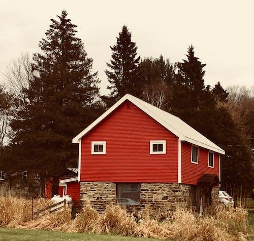 Kostenloses Stock Foto zu bauernhaus, bauernhof, bäume, familie