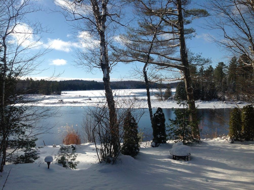 冬天的景色, 冰凍的湖面, 加拿大 的 免费素材图片