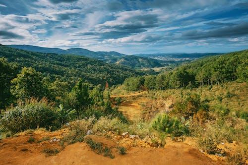 Kostnadsfri bild av anläggning, bergen, fredlig, highlands