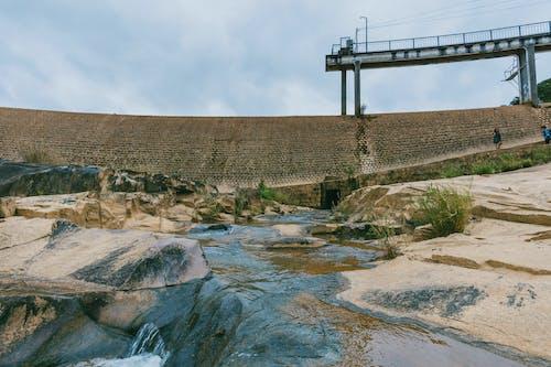 Immagine gratuita di acqua, ambiente, architettura, erba