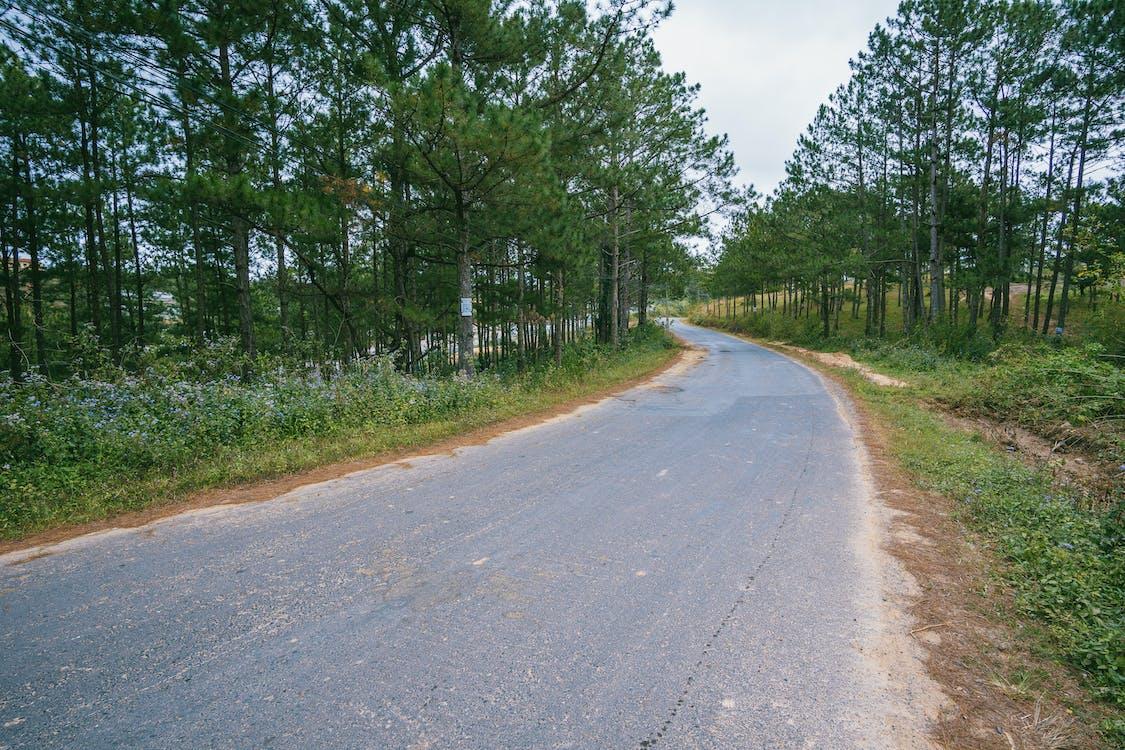asfalt, bruk, chodnik