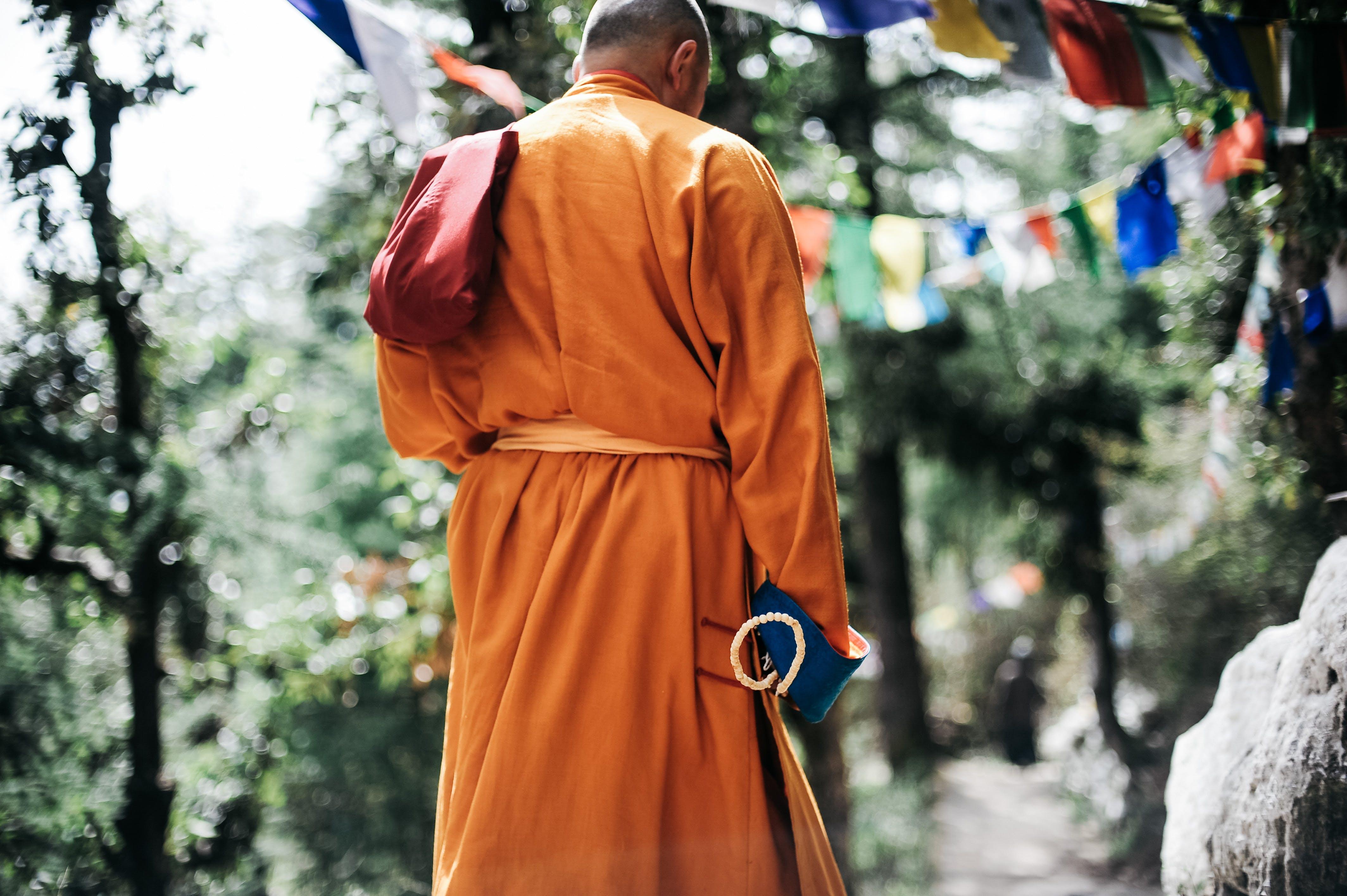 Kostenloses Stock Foto zu ammern, anbetung, buddha, buddhismus