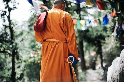 Gratis lagerfoto af åndelig, bøn, buddha, Buddhisme
