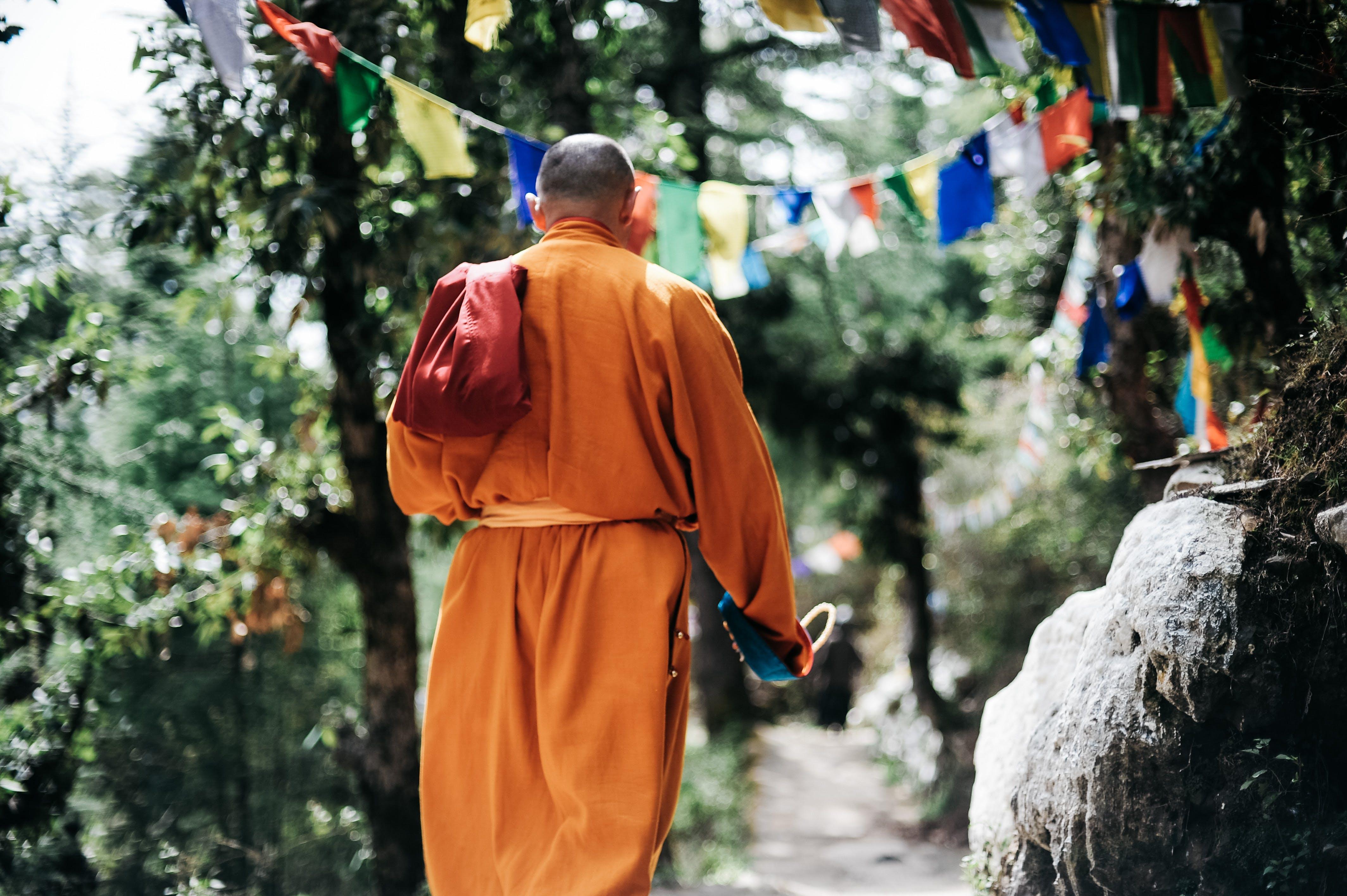 Free stock photo of Buddhism, buddhist, india, meditation