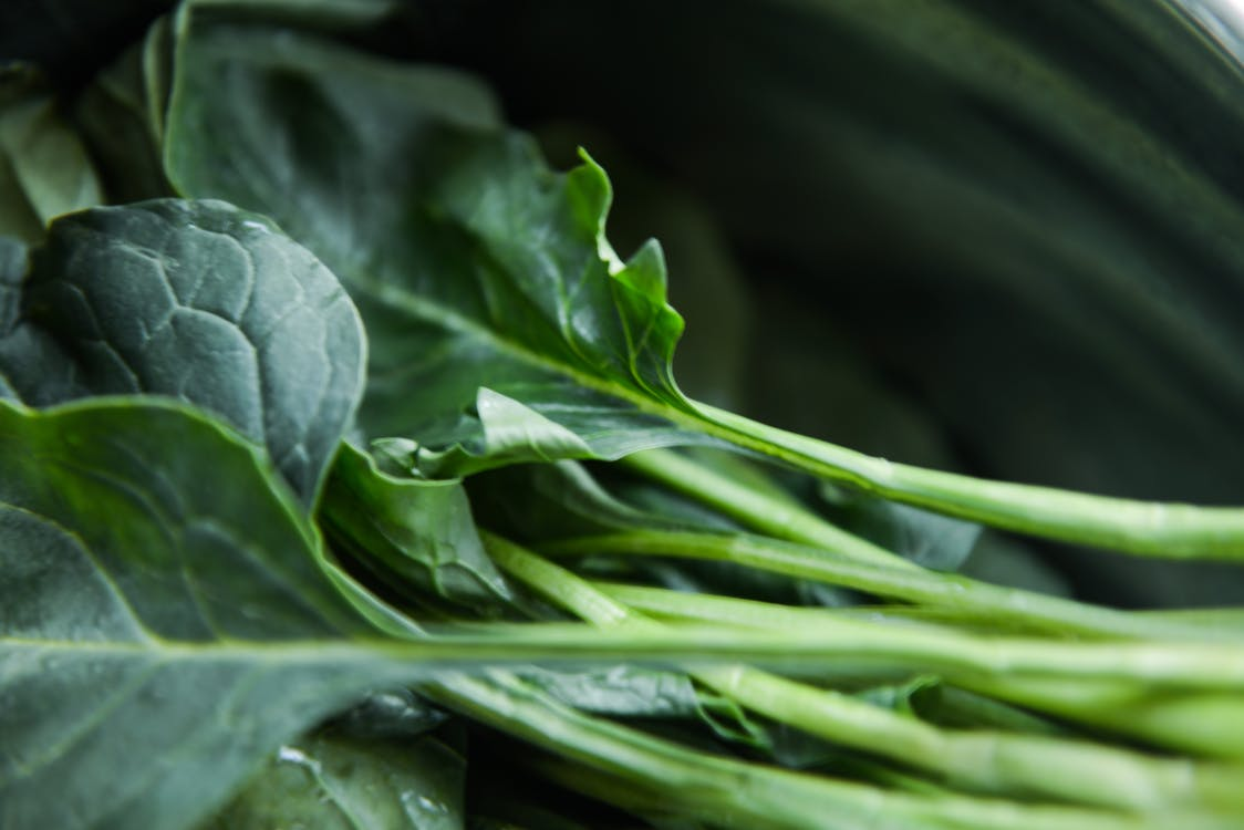 biologisch, close-up, collard greens