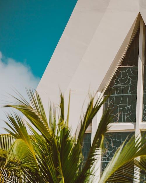 Kostenloses Stock Foto zu architektur, blatt, draußen