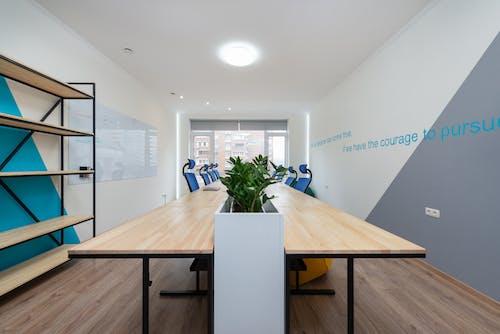 Meja Kayu Putih Dengan Tanaman Hijau Di Atas