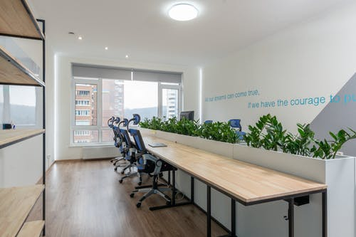Armchairs at table with green plants in stylish conference room with motivational inscription on wall and window in business center