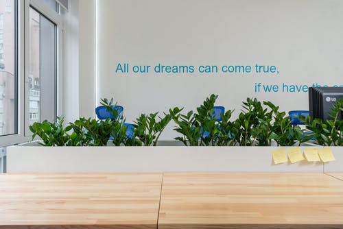 Wooden table with stickers near green plants and wall with motivational inscription in modern conference room with window in office