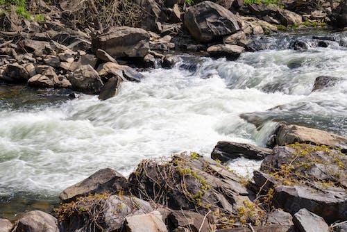 Darmowe zdjęcie z galerii z górski potok, strumień