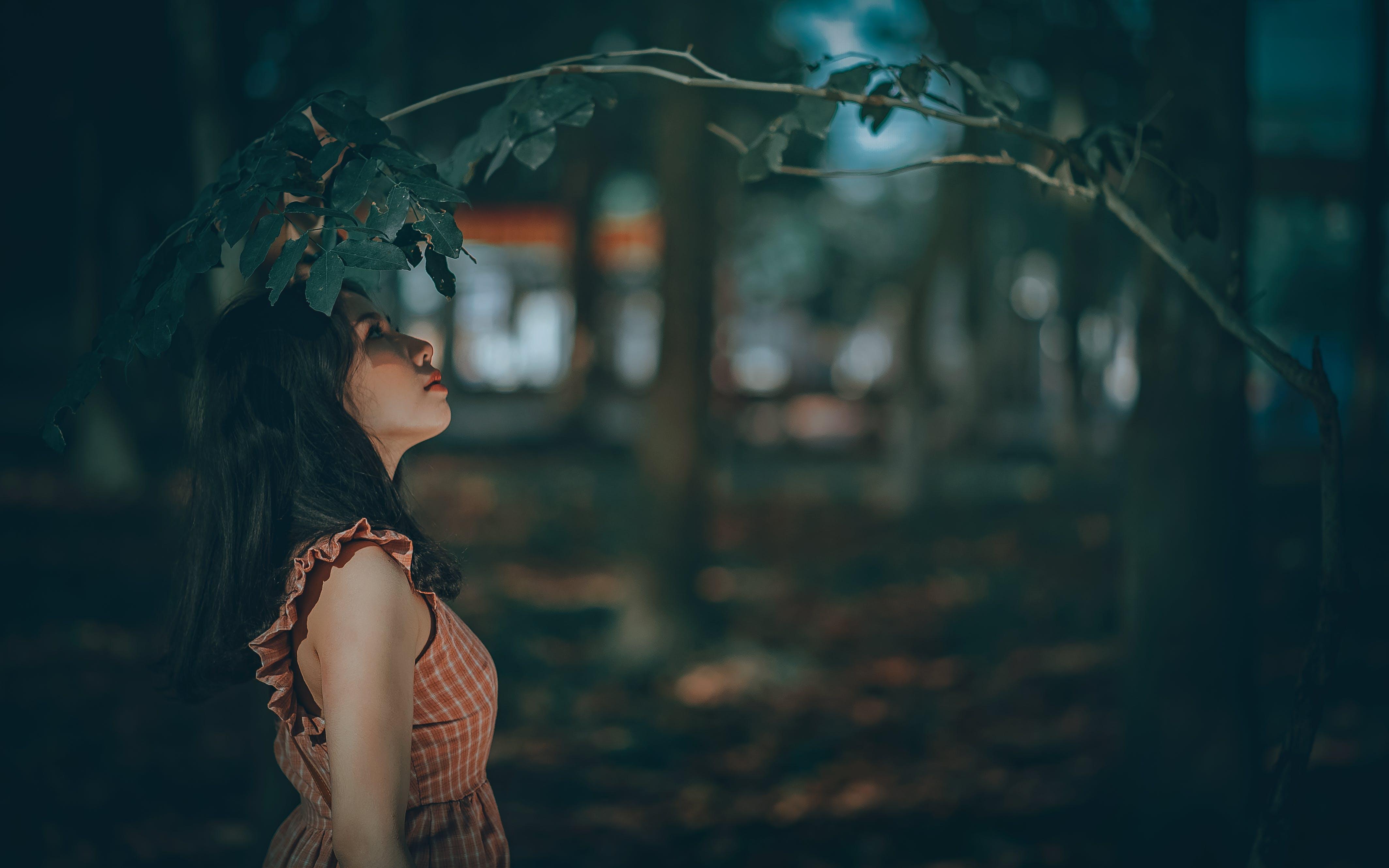 Woman Under Green Leaf Tree