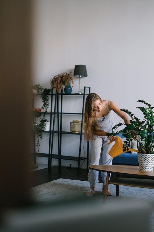 Foto profissional grátis de água, apartamento, atenção