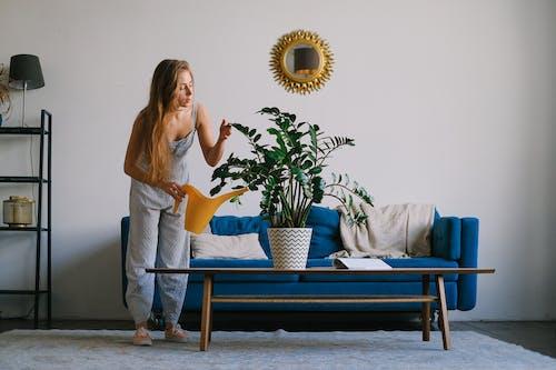 Základová fotografie zdarma na téma apartmán, blond, dáma