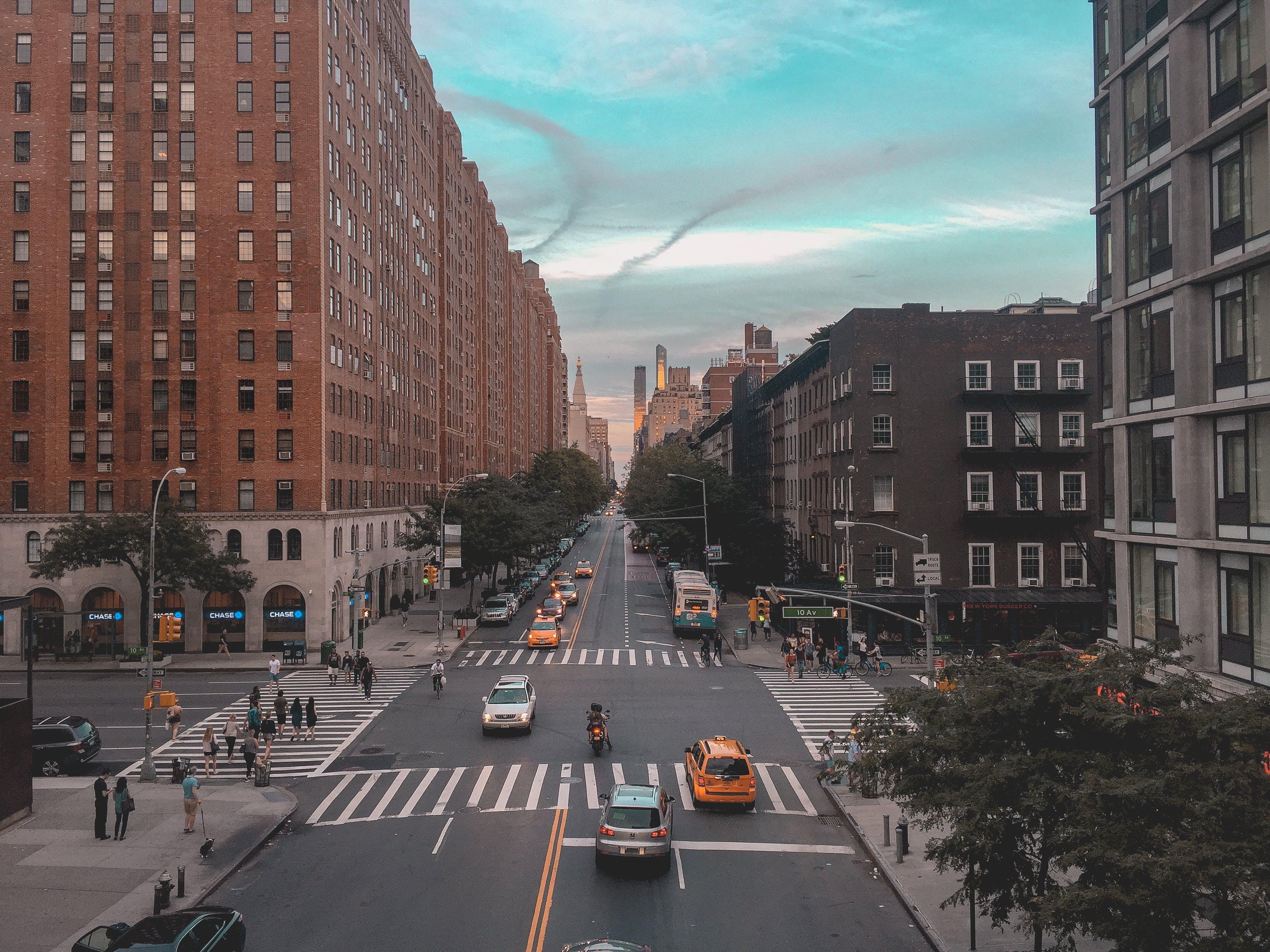 Kostenloses Stock Foto zu architektur, autos, bäume, büros