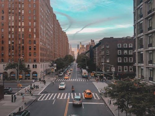 Foto d'estoc gratuïta de arbres, arquitectura, carrer, carretera