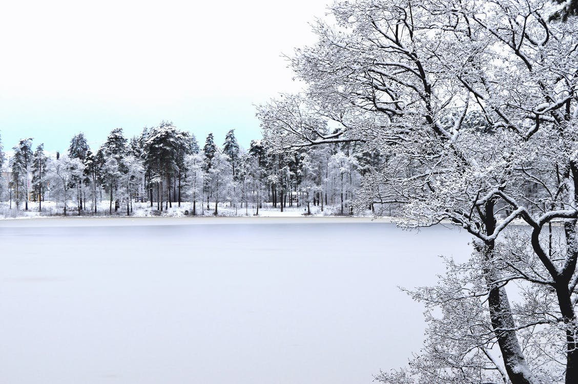 chladný, čierna a biela, čiernobiely