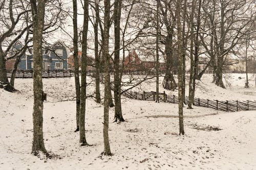 Free stock photo of Apladalen, daylight, fence, houses