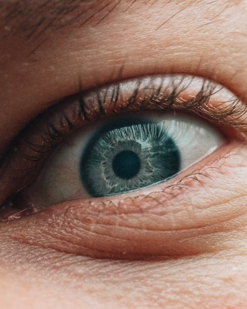 Gray eye of anonymous woman