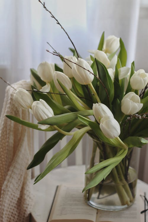 Glass vase with bunch of white tulips arranged on opened book