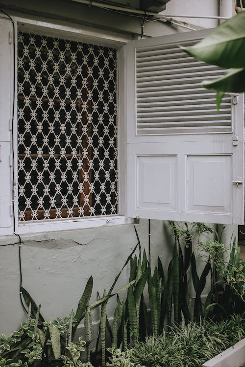 White Wooden Window Frame With White Window Blinds