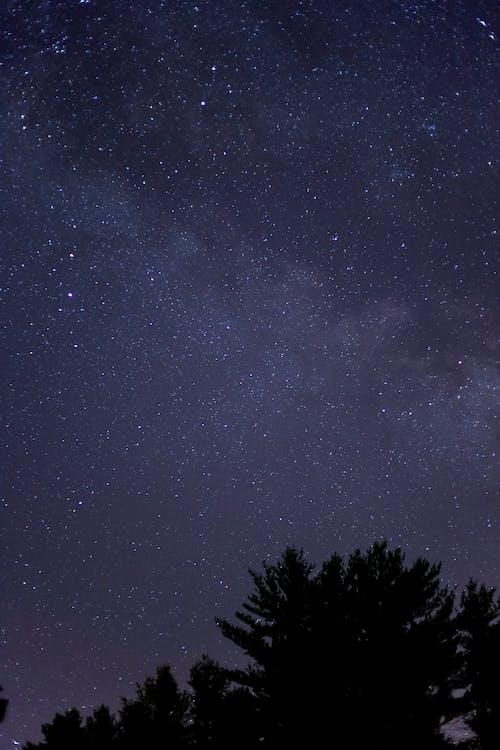 คลังภาพถ่ายฟรี ของ กลางคืน, กาแล็กซี, ช่องว่าง, ดวงดาว