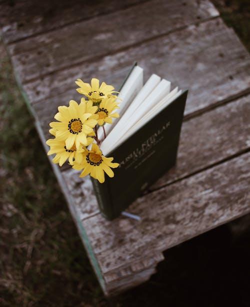 Бесплатное стоковое фото с аромат, благоухающий, ботаника