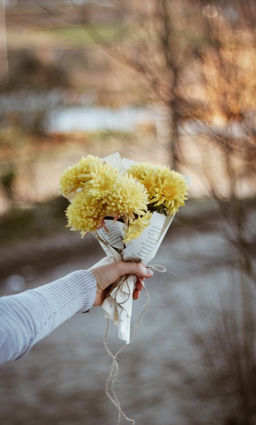 Crop unrecognizable person showing blossoming yellow flowers with pleasant scent wrapped in pages with text and tied rope in park
