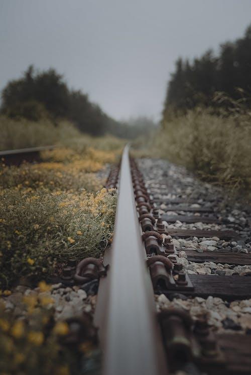 レール, 垂直ショット, 線路の無料の写真素材