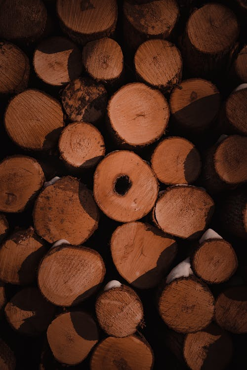 テクスチャ, みじん切りの森, 垂直の無料の写真素材