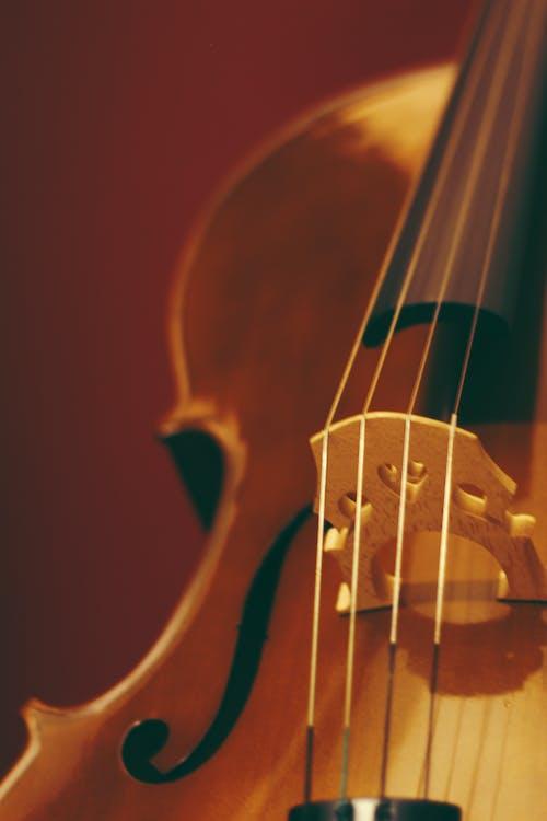 Kostenloses Stock Foto zu akustisch, brücke, cello, drinnen