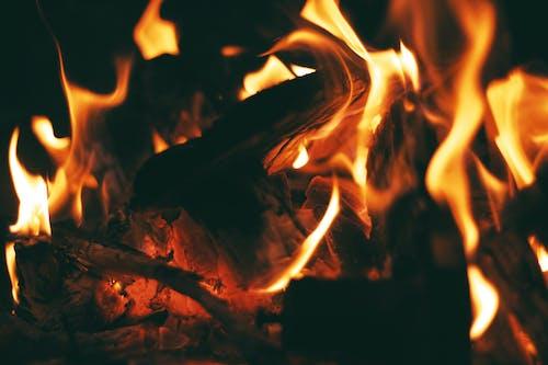 Бесплатное стоковое фото с горение, гореть, горячий, древесный уголь