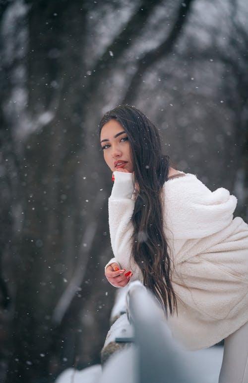 Free stock photo of adult, beautiful, christmas