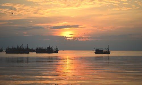 Free stock photo of Hoàng hôn