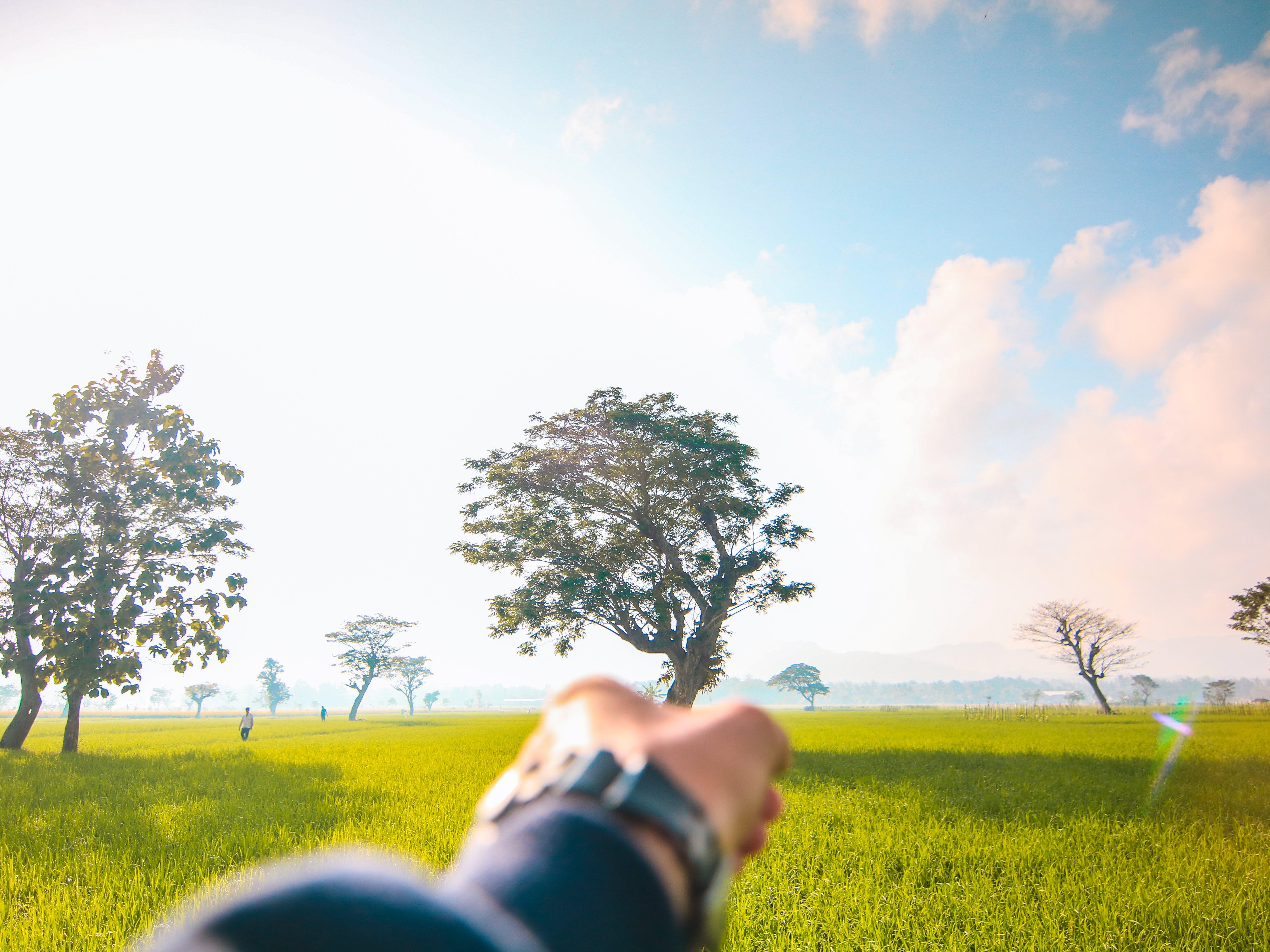 Free stock photo of adventure, awesomeness, beautiful, blue sky