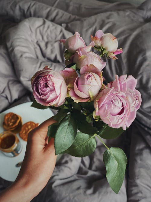 From above of crop anonymous person showing gentle pink roses in blossom near blanket with tasty dessert for breakfast