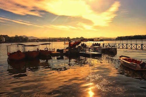 Fotos de stock gratuitas de agua, barcos, barcos al atardecer