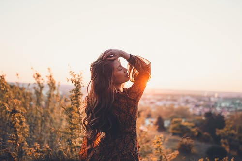 Free stock photo of beautiful, dawn, fall