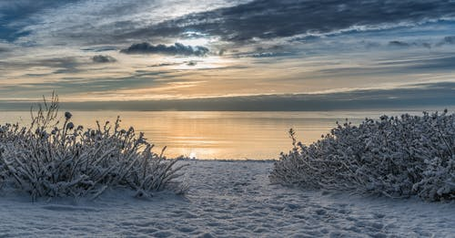 Kostenloses Stock Foto zu dämmerung, einfrieren, eis, frost