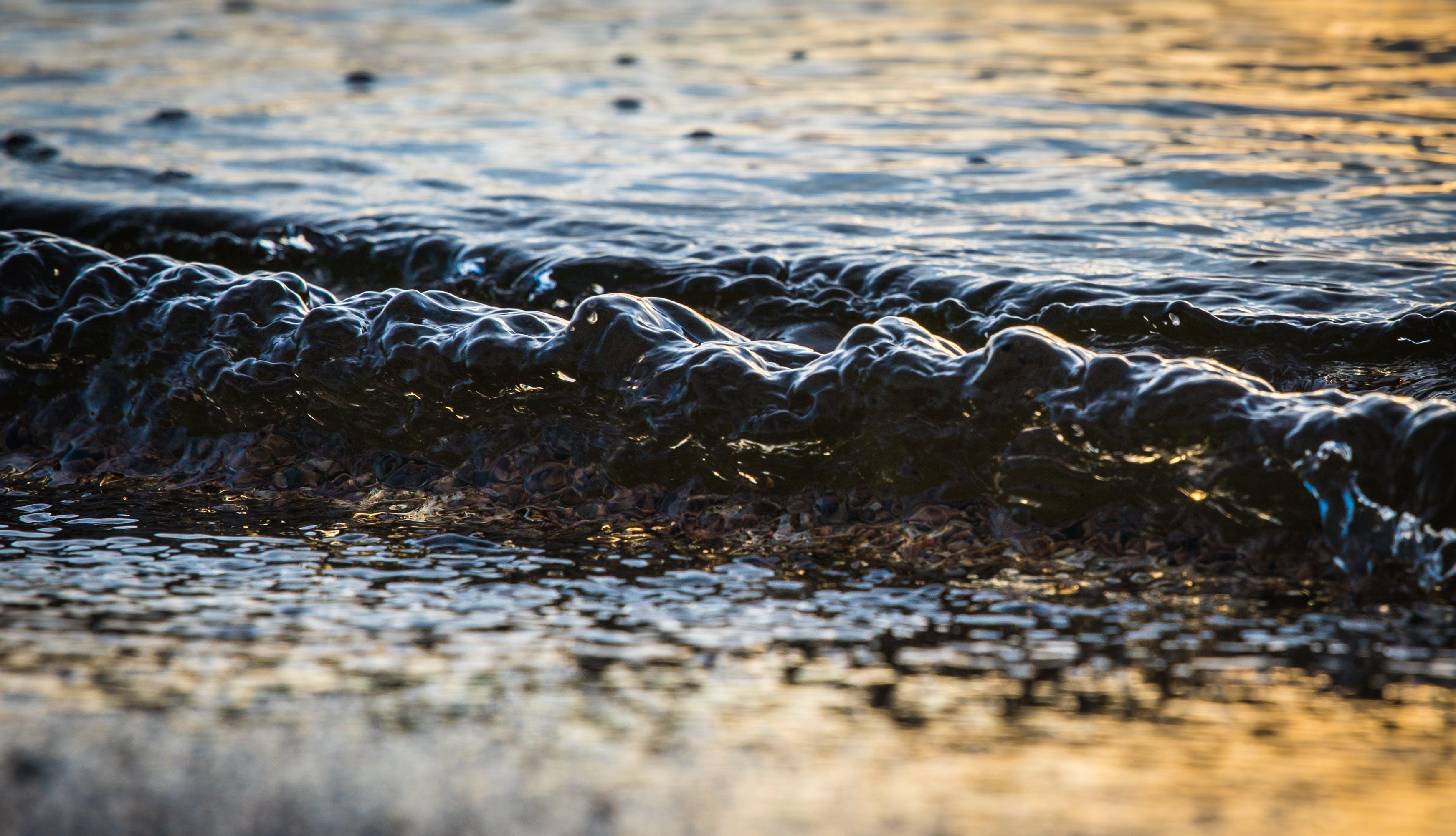 Foto stok gratis air, basah, dingin, gelap