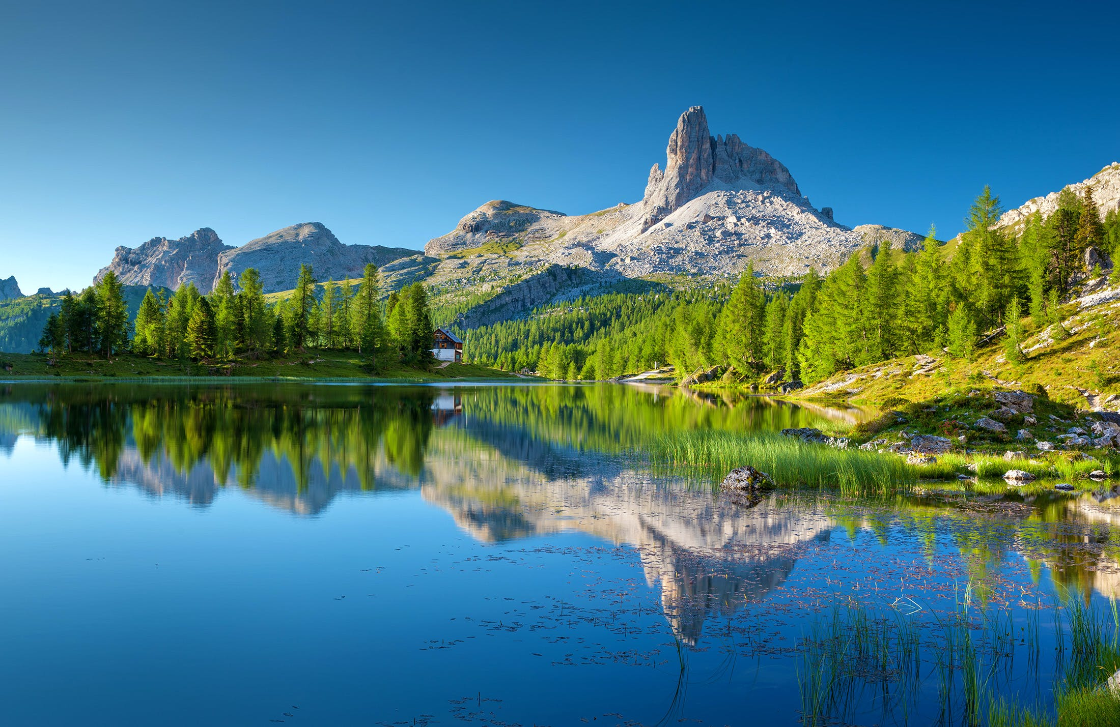 Landscape Photography of White Mountain