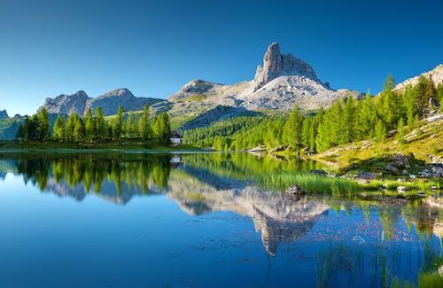 Ingyenes stockfotó alpesi, Alpok, dolomitok, fa témában