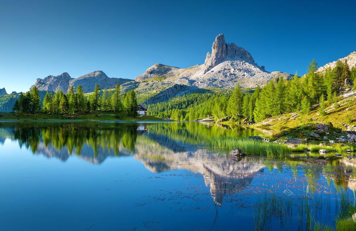 Kostenloses Stock Foto zu alpen, alpin, bäume