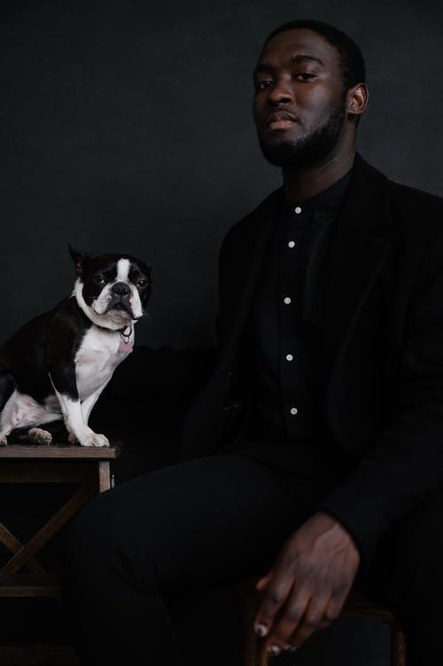 Crop serious African American male in trendy black apparel looking at camera while sitting next to Boston Terrier located on wooden chair