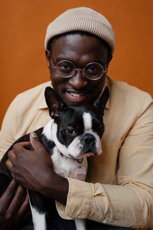 Základová fotografie zdarma na téma afroameričan, afroamerický, bostonský teriér