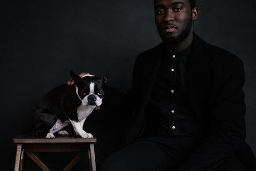 Crop African American male wearing black shirt sitting near thoroughbred black and white dog with hand on back of pet on black background