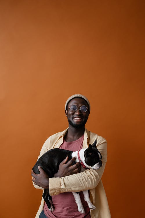 Základová fotografie zdarma na téma afroameričan, barevné pozadí, bostonský teriér